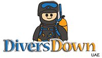 Divers Down UAE Retina Logo